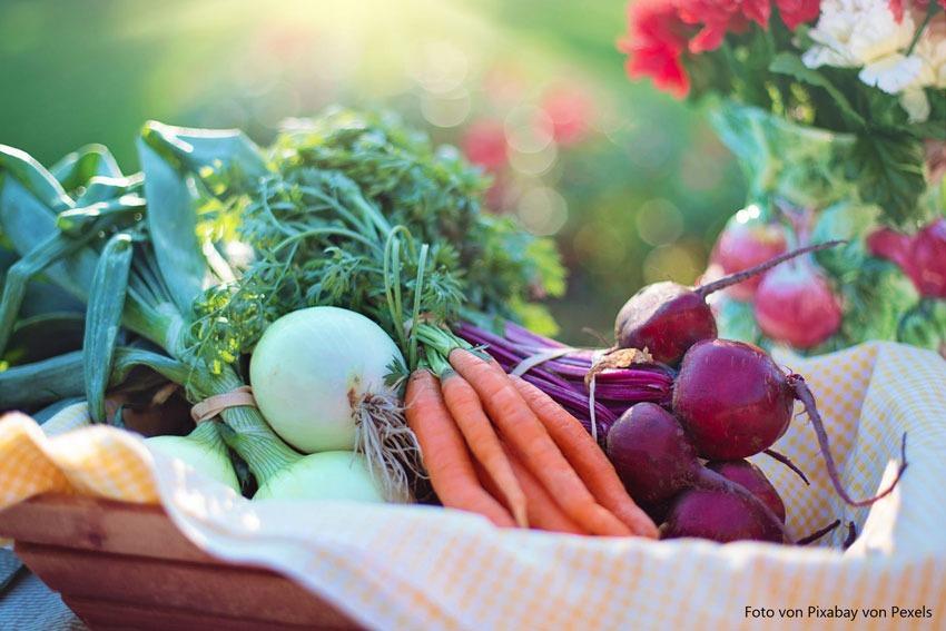 Ernährung und Konsum sind ein wichtiger Faktor bei Couperose